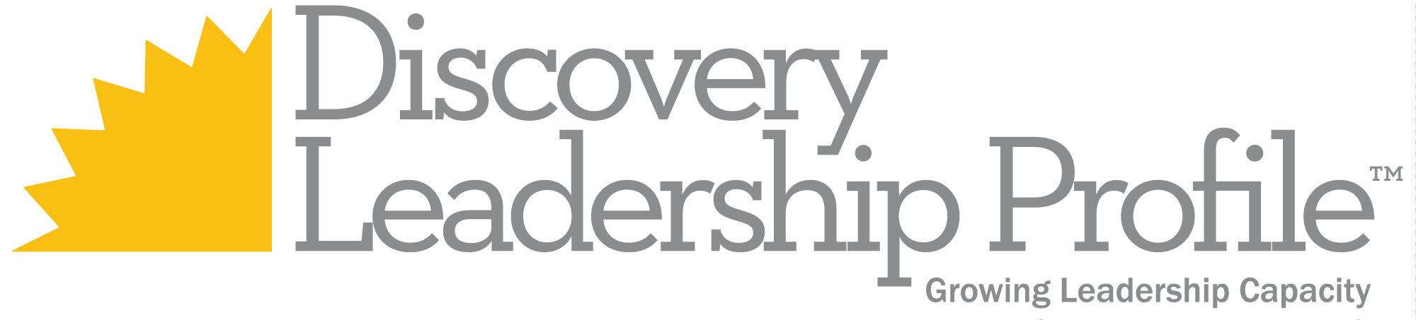 Discovery-Leadership-Profile1